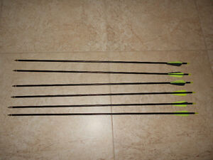 6pk Fiberglass Arrows-Brand New