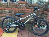 Apollo Spektor Kids Bike