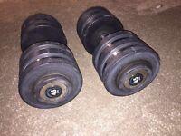 45kg dumbells