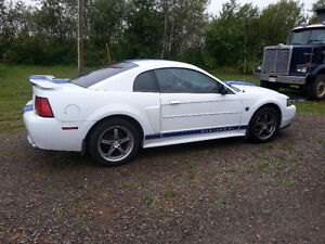 2004 Anniversary Edition Ford Mustang GT
