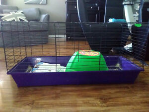 Rabbit cage\home
