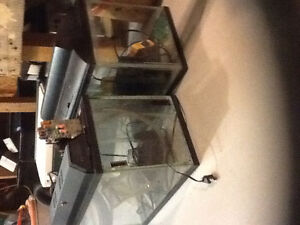 Two fish tanks for sale
