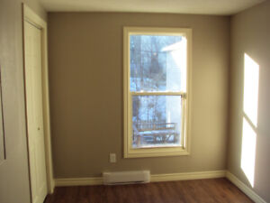 Two bedroom two storey condo in west end