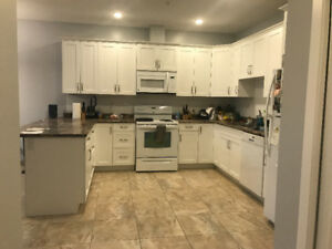 Room for rent in 2 bedroom/2 bath apartment