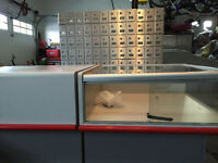 RETAIL COUNTER WITH MAIL BOXES