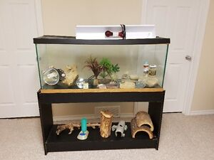 50 Gallon Terrarium with stand, top, lights and accessories