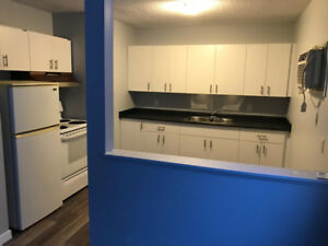 1 Bedroom and 2 Bedroom Apartments (Jan 1, 2019 possession)