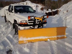 2001 DODGE DAKOTA 4X4  WITH FISHER POWER ANGLE SNOW PLOW