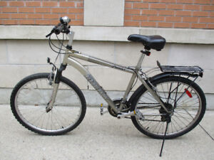 Great Extras - Infinity 21 Speed Mountain Bike - Smooth Travels