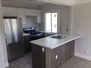 Brand New Downtown 1 bedroom