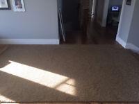 8'x12' area rug