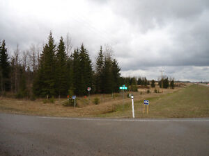 114.3 acres 1 mile East Of Niton Junction