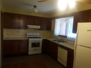 Complete Kitchen cabinets, counter tops & floors