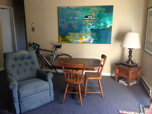 Sunny Apartment! Roommate Wanted!