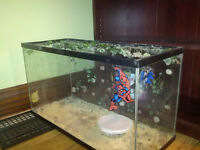 Selling a reptile dry tank. 20gal