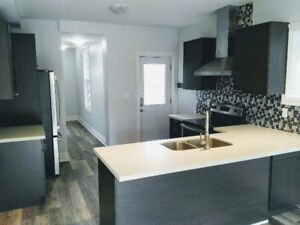Brand New LEGAL - 2BR, 2Bath, Incl Parking, AC, In Suite Laundry
