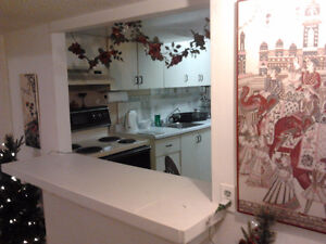 Beautiful 2 Bedroom Furnished Basement Apartment *Available Now*