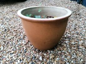 Vintage plant pot planter