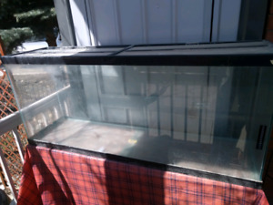 55 gallon aquarium with cover and stand.