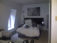 Large Fully Furnished May- Sept Sublet