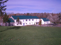 Full Service Equestrian Facility in HRM