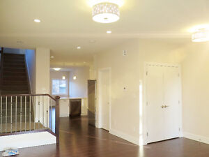 BRAND NEW HOME LOCATED IN DELTON! NEAR DOWNTOWN!