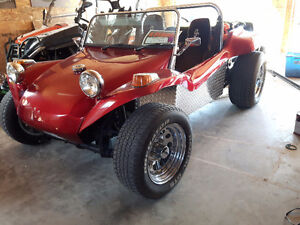 1973 buggy for sale