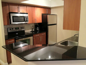Furnished 2 Bedroom Condo2 - Bay/Bloor