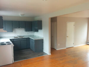 3 BEDROOM APARTMENT FOR RENT ACROSS STREET FROM ALGOMA U