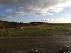 11.2 Acre Plot of Land near Turriff, Aberdeenshire AB53. For Sale, Swap, Part Exchange, WHY??