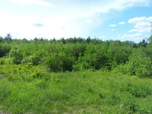 3 BUILDING LOTS IN MACDOUGALL SETTLEMENT