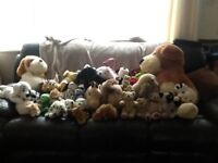 Lots of cuddly toys