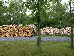 DRY SEASONED FIREWOOD,  CHEAP PICK UP PRICE-ODESSA Kingston Kingston Area image 1