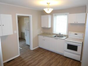 Newly reno'd 2 BDRM home in East Regina for rent