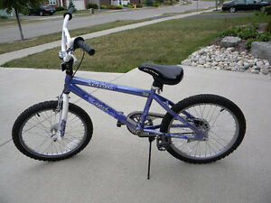 Girl's Bike Kitchener / Waterloo Kitchener Area image 2