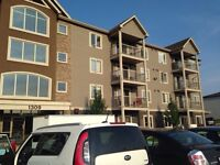 Beautiful 1 Bedroom Central Moncton