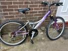 Bike £10