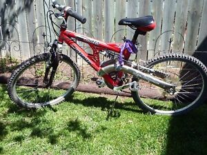 Infinity (youth) Mountain Bike    V.G. Condition    21 Speed
