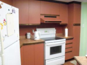 Ensemble de 17 portes d'armoires de cuisine et de 4 tiroirs
