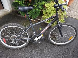 """24"""" Triumph Challenger Kids bike, Excellent condition - NDG"""