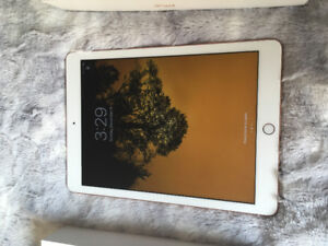 32GB Gold BRAND NEW iPad. EVERYTHING INCLUDED:)