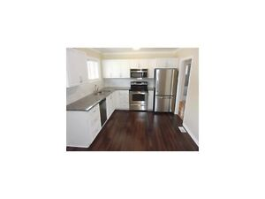 $650 per room All Inclusive, 15 min Walk to Algonquin College