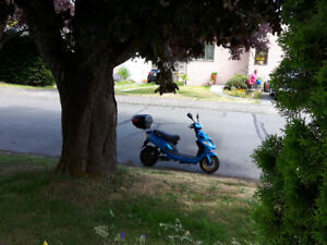 Ace 500 - 100% Electric Scooter