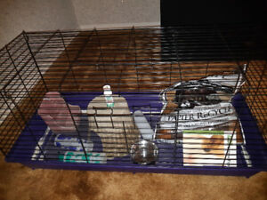 Large bunny/Guinea pig cage