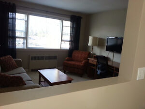 Clean & Quiet One Bedroom Apt available Jan 1st in Old South London Ontario image 3