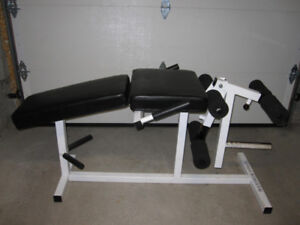 Leg Curl/Leg Extension Bench gym weights exercise
