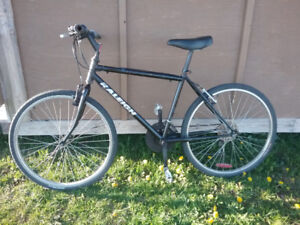 Raleigh mountain bike equipped with light roll resistant Kendra