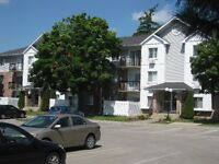 Two & Three Bedroom Condos for Rent - Available Immediately