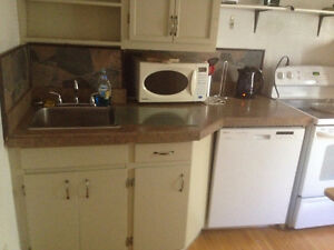 AVAILABLE JAN 1 Furnished 2 BR in character home near Old Campus Regina Regina Area image 3