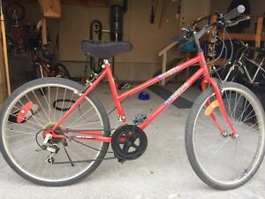Female 12 Speed Mountain Bike